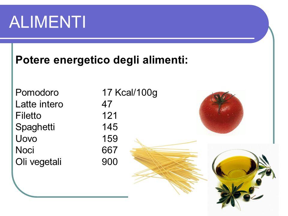 ALIMENTI Potere energetico degli alimenti: Pomodoro 17 Kcal/100g Latte intero 47 Filetto121 Spaghetti145 Uovo159 Noci667 Oli vegetali900