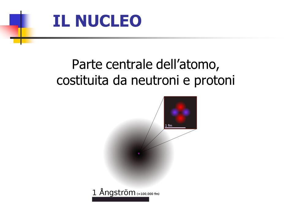 IL NUCLEO Parte centrale dellatomo, costituita da neutroni e protoni