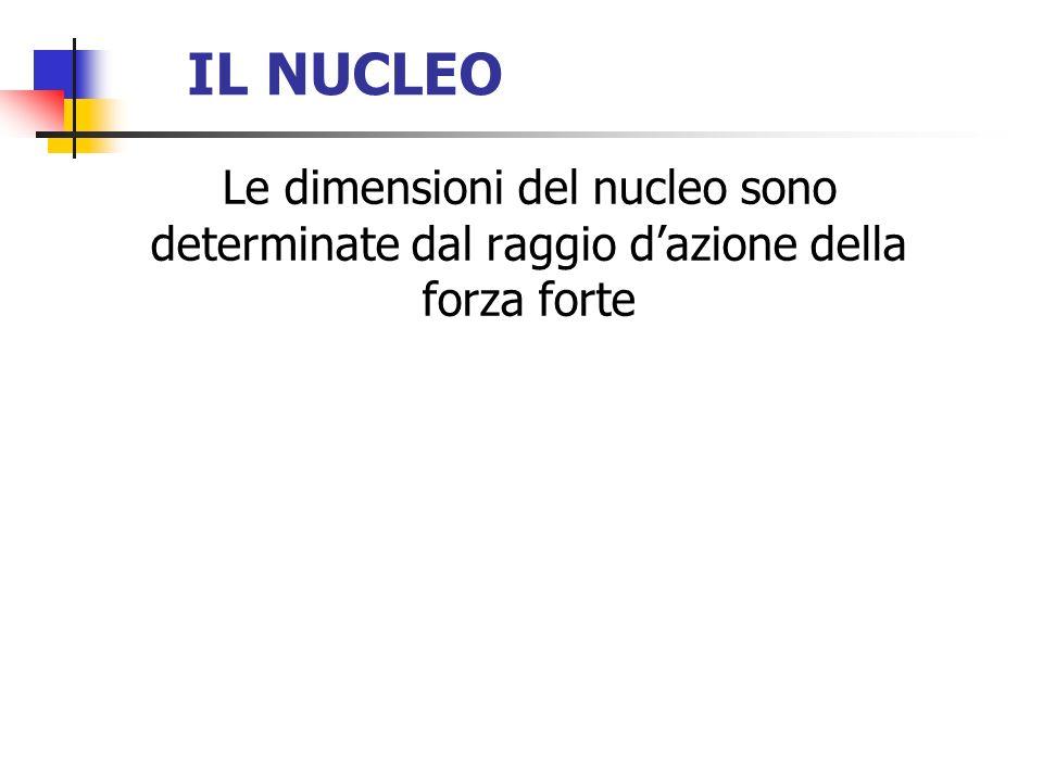 IL NUCLEO Le dimensioni del nucleo sono determinate dal raggio dazione della forza forte