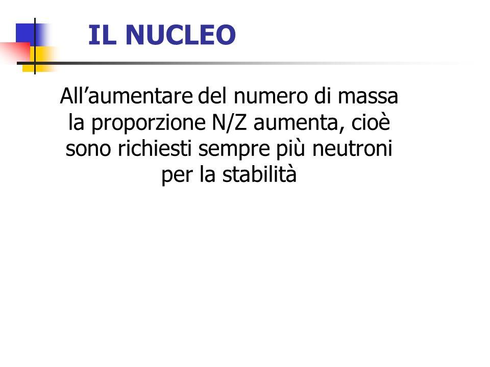 IL NUCLEO Allaumentare del numero di massa la proporzione N/Z aumenta, cioè sono richiesti sempre più neutroni per la stabilità