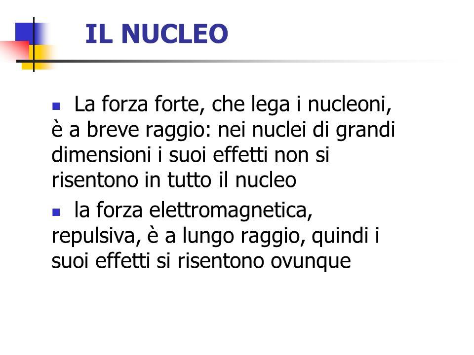 IL NUCLEO La forza forte, che lega i nucleoni, è a breve raggio: nei nuclei di grandi dimensioni i suoi effetti non si risentono in tutto il nucleo la