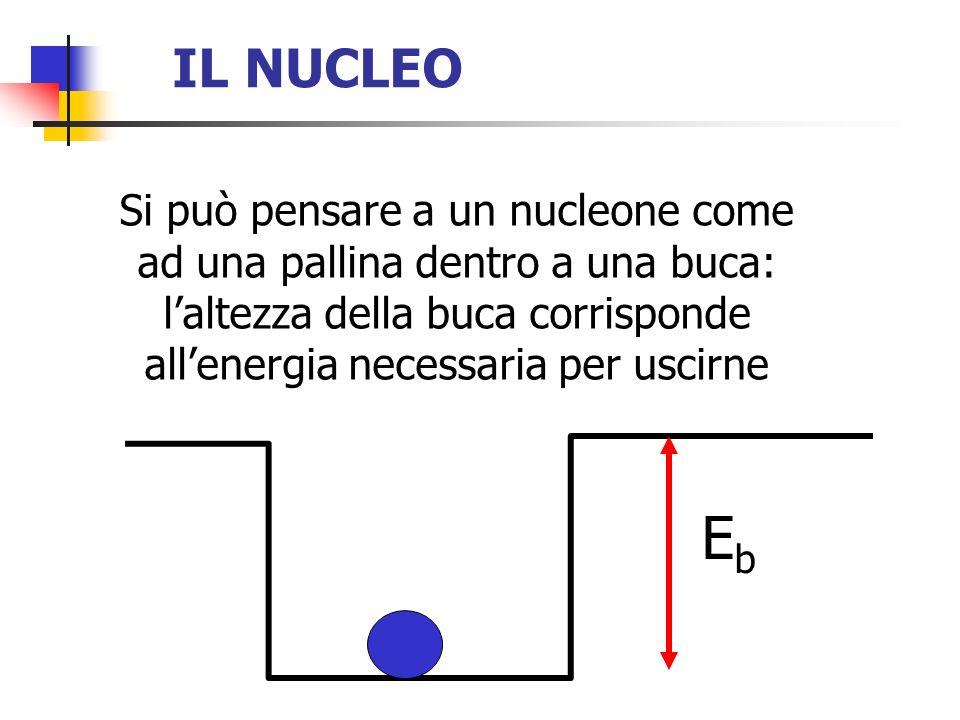 IL NUCLEO Si può pensare a un nucleone come ad una pallina dentro a una buca: laltezza della buca corrisponde allenergia necessaria per uscirne EbEb