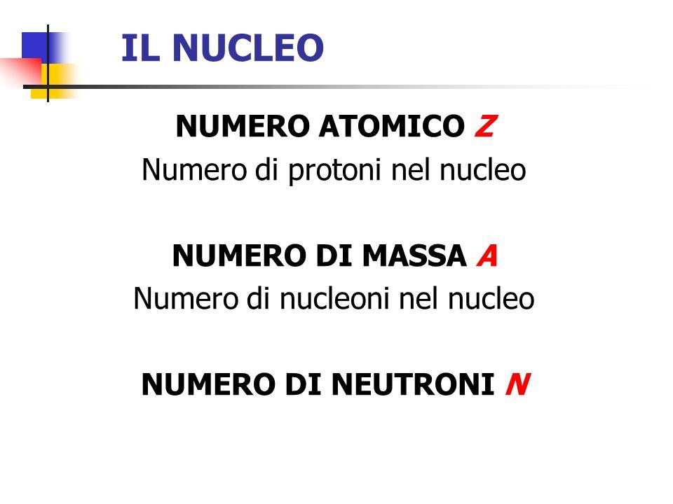 IL NUCLEO NUMERO ATOMICO Z Numero di protoni nel nucleo NUMERO DI MASSA A Numero di nucleoni nel nucleo NUMERO DI NEUTRONI N