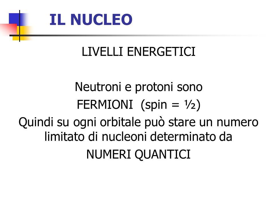 IL NUCLEO LIVELLI ENERGETICI Neutroni e protoni sono FERMIONI (spin = ½) Quindi su ogni orbitale può stare un numero limitato di nucleoni determinato