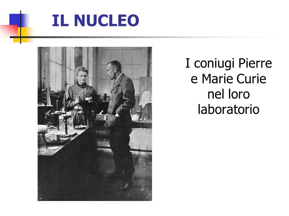 IL NUCLEO I coniugi Pierre e Marie Curie nel loro laboratorio