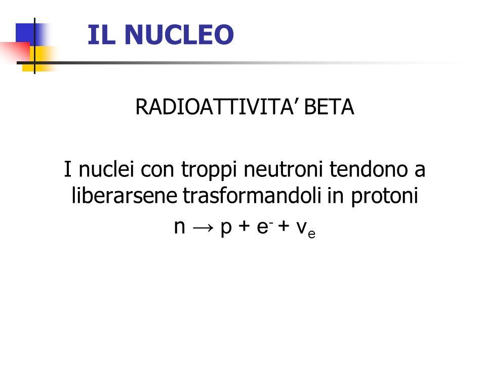 IL NUCLEO RADIOATTIVITA BETA I nuclei con troppi neutroni tendono a liberarsene trasformandoli in protoni n p + e - + ν e