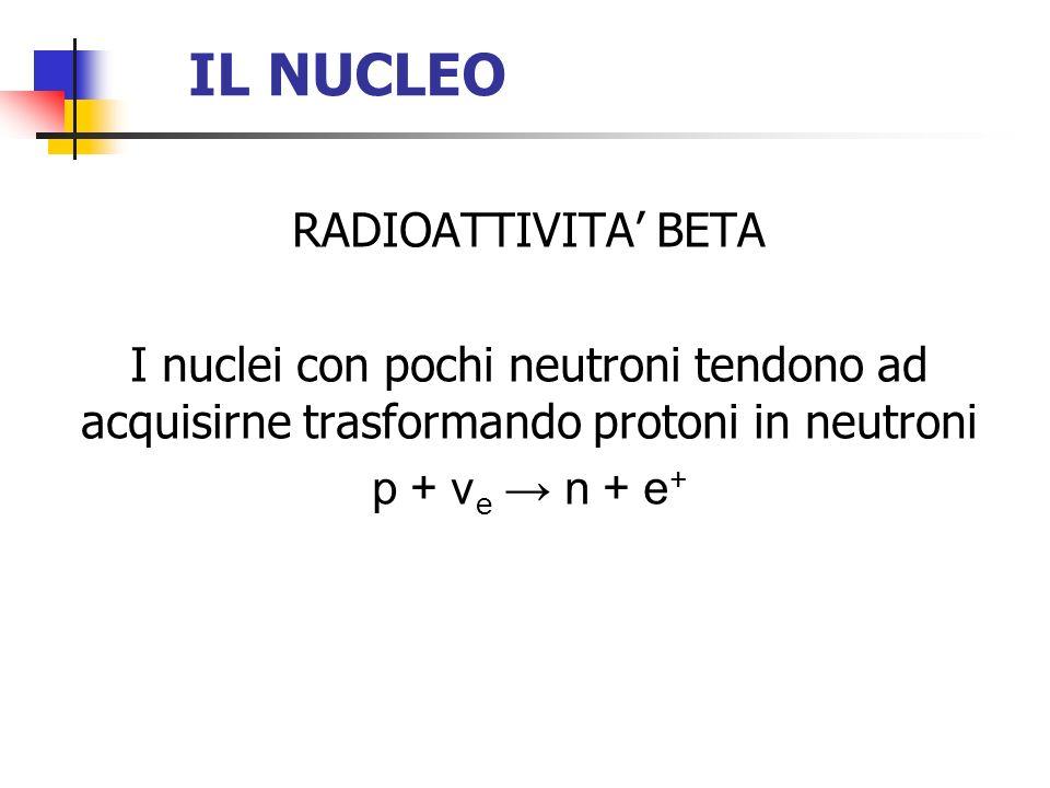IL NUCLEO RADIOATTIVITA BETA I nuclei con pochi neutroni tendono ad acquisirne trasformando protoni in neutroni p + ν e n + e +