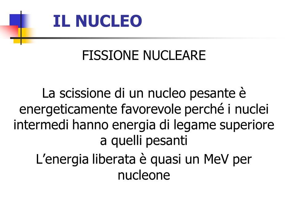 IL NUCLEO FISSIONE NUCLEARE La scissione di un nucleo pesante è energeticamente favorevole perché i nuclei intermedi hanno energia di legame superiore