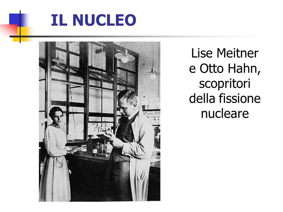 IL NUCLEO Lise Meitner e Otto Hahn, scopritori della fissione nucleare
