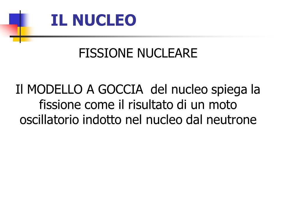 IL NUCLEO FISSIONE NUCLEARE Il MODELLO A GOCCIA del nucleo spiega la fissione come il risultato di un moto oscillatorio indotto nel nucleo dal neutron