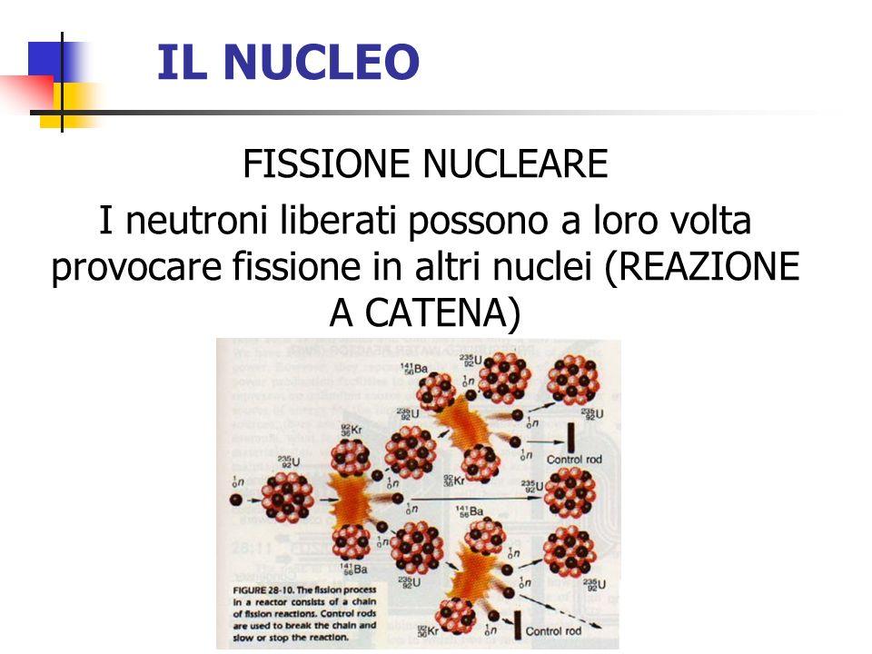 IL NUCLEO FISSIONE NUCLEARE I neutroni liberati possono a loro volta provocare fissione in altri nuclei (REAZIONE A CATENA)