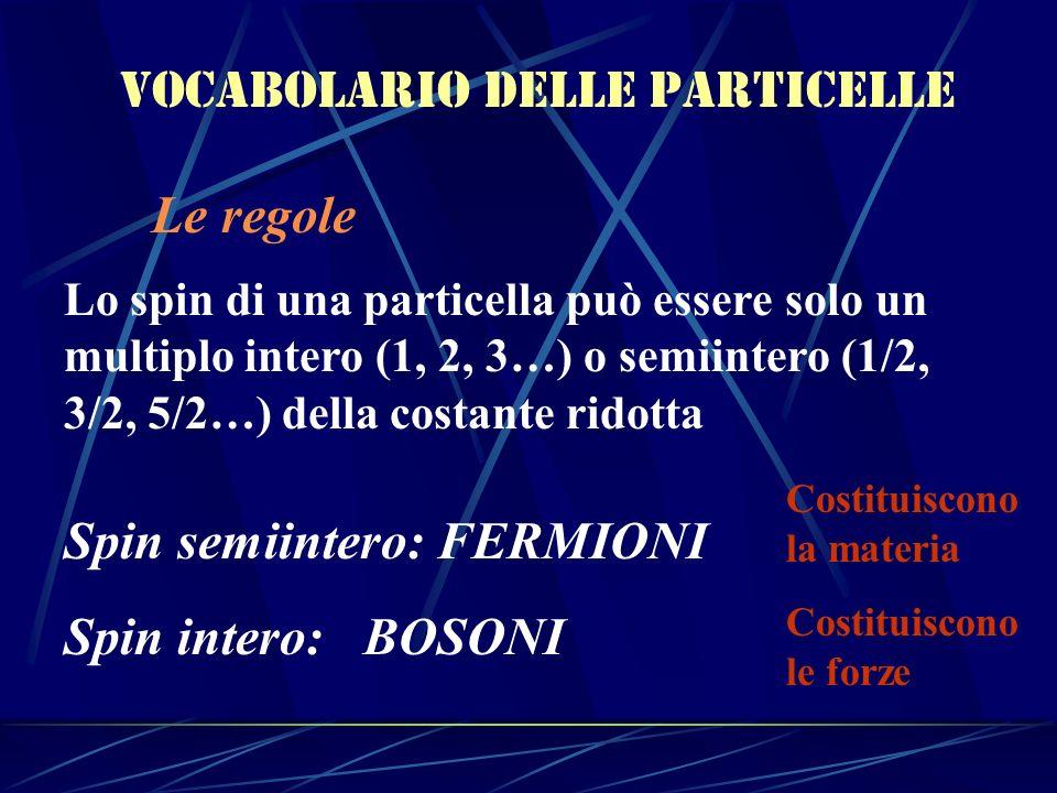 Vocabolario delle particelle Le regole Lo spin di una particella può essere solo un multiplo intero (1, 2, 3…) o semiintero (1/2, 3/2, 5/2…) della cos