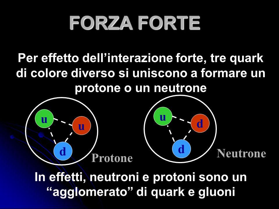 Per effetto dellinterazione forte, tre quark di colore diverso si uniscono a formare un protone o un neutrone In effetti, neutroni e protoni sono un agglomerato di quark e gluoni u d u u d d Protone Neutrone FORZA FORTE