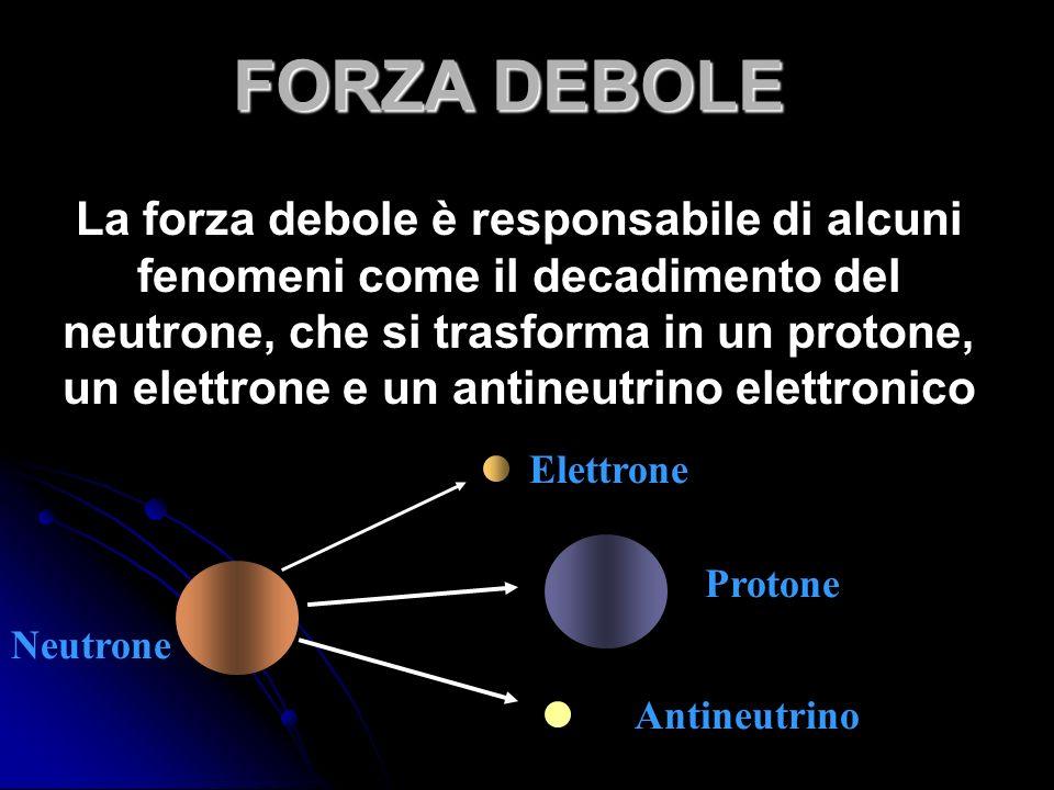 La forza debole è responsabile di alcuni fenomeni come il decadimento del neutrone, che si trasforma in un protone, un elettrone e un antineutrino elettronico Neutrone Antineutrino Protone Elettrone FORZA DEBOLE