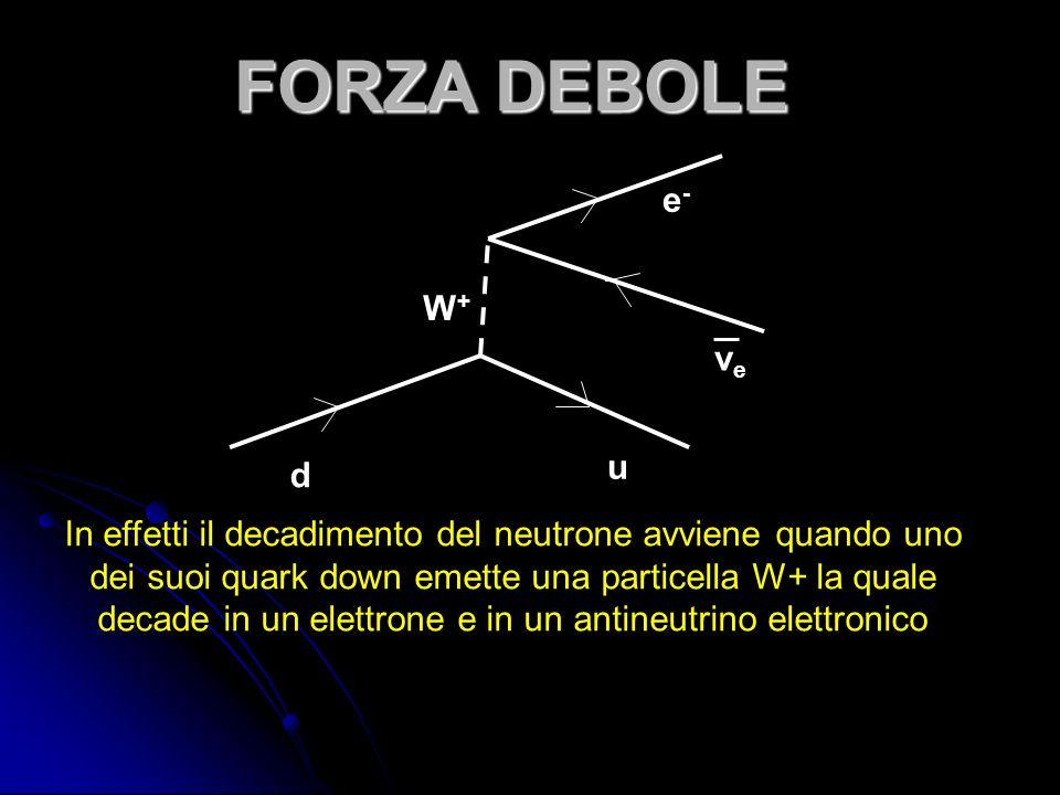 d u W+W+ νeνe e-e- In effetti il decadimento del neutrone avviene quando uno dei suoi quark down emette una particella W+ la quale decade in un elettrone e in un antineutrino elettronico
