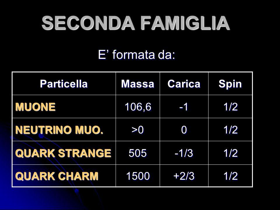 SECONDA FAMIGLIA E formata da: ParticellaMassaCaricaSpinMUONE106,61/2 NEUTRINO MUO. >001/2 QUARK STRANGE 505-1/31/2 QUARK CHARM 1500+2/31/2