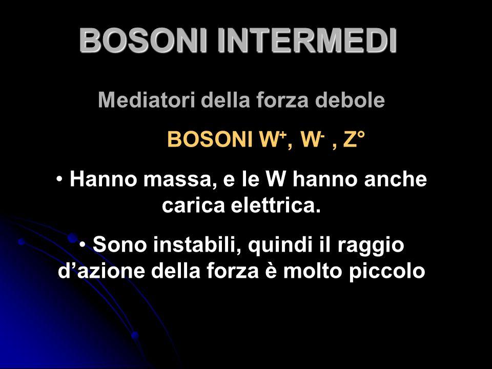 Mediatori della forza debole BOSONI W +, W -, Z° Hanno massa, e le W hanno anche carica elettrica. Sono instabili, quindi il raggio dazione della forz