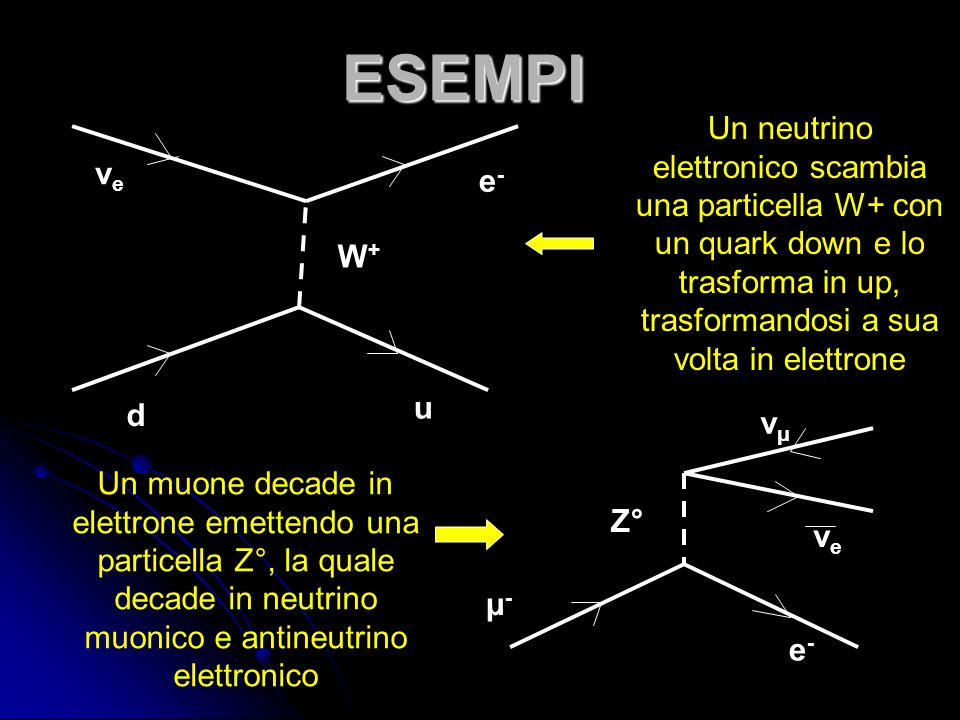 ESEMPI d u W+W+ νeνe e-e- Un neutrino elettronico scambia una particella W+ con un quark down e lo trasforma in up, trasformandosi a sua volta in elettrone μ-μ- νμνμ νeνe e-e- Z° Un muone decade in elettrone emettendo una particella Z°, la quale decade in neutrino muonico e antineutrino elettronico