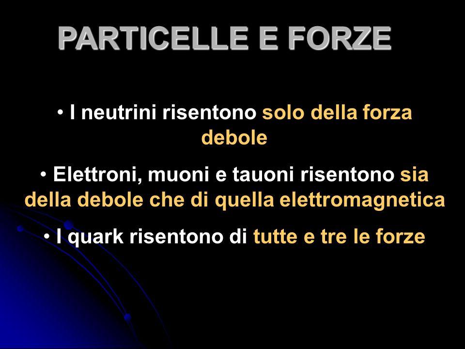 I neutrini risentono solo della forza debole Elettroni, muoni e tauoni risentono sia della debole che di quella elettromagnetica I quark risentono di tutte e tre le forze PARTICELLE E FORZE