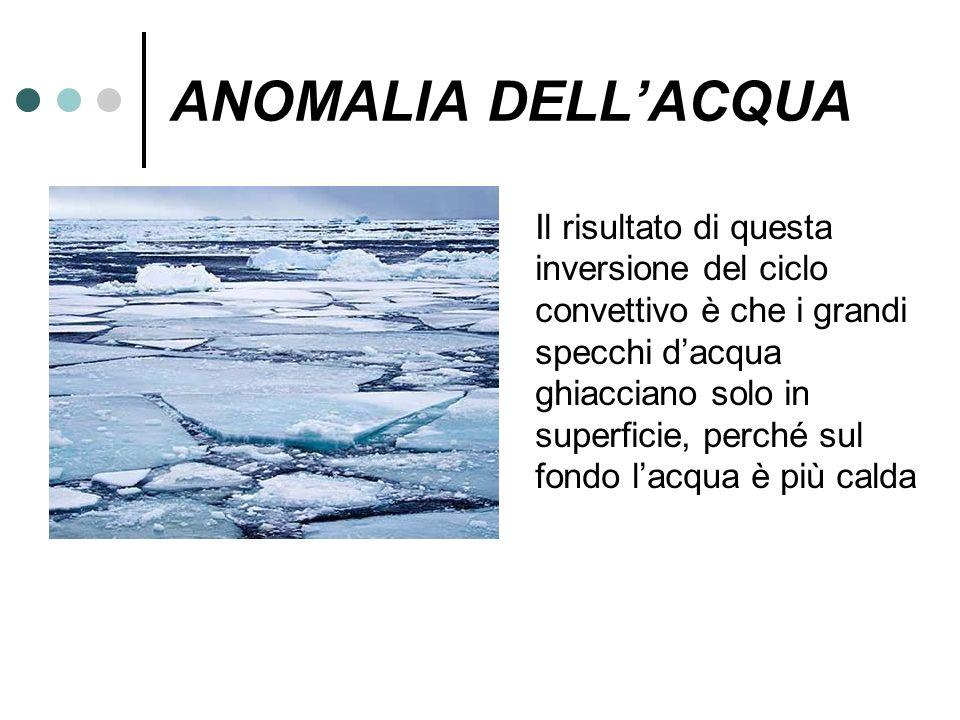 ANOMALIA DELLACQUA Il risultato di questa inversione del ciclo convettivo è che i grandi specchi dacqua ghiacciano solo in superficie, perché sul fond