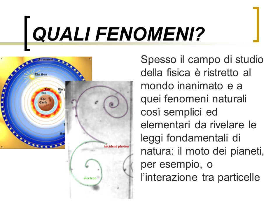 QUALI FENOMENI? Spesso il campo di studio della fisica è ristretto al mondo inanimato e a quei fenomeni naturali così semplici ed elementari da rivela