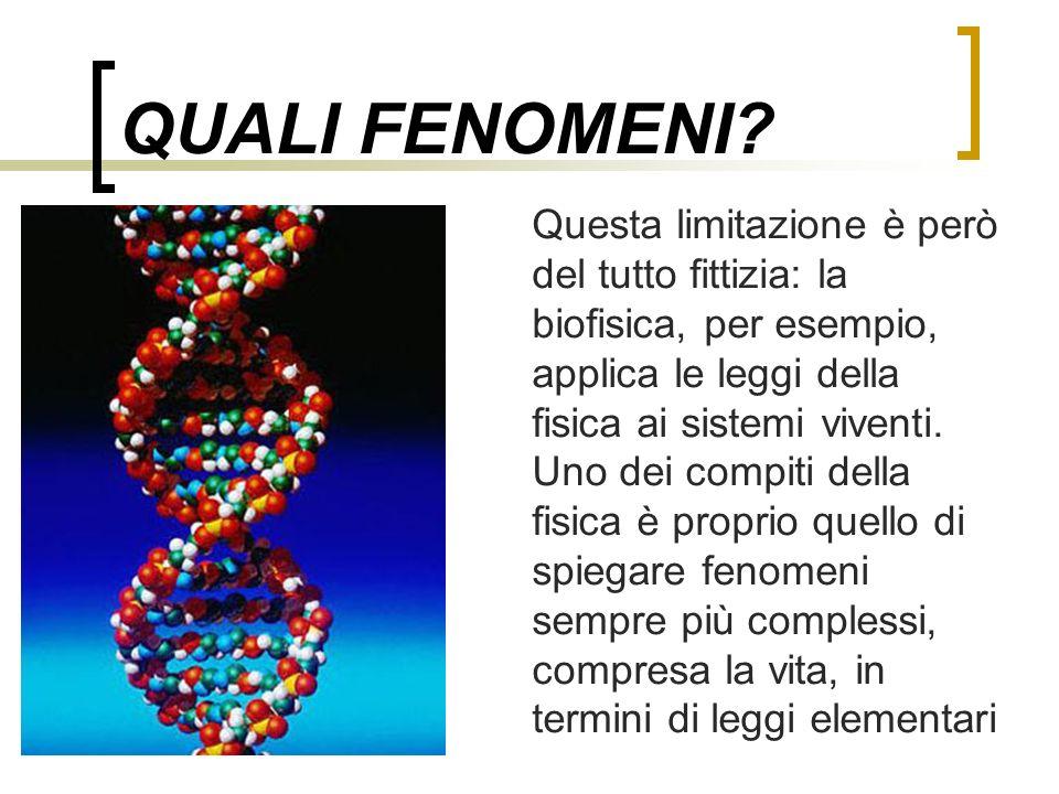 QUALI FENOMENI? Questa limitazione è però del tutto fittizia: la biofisica, per esempio, applica le leggi della fisica ai sistemi viventi. Uno dei com