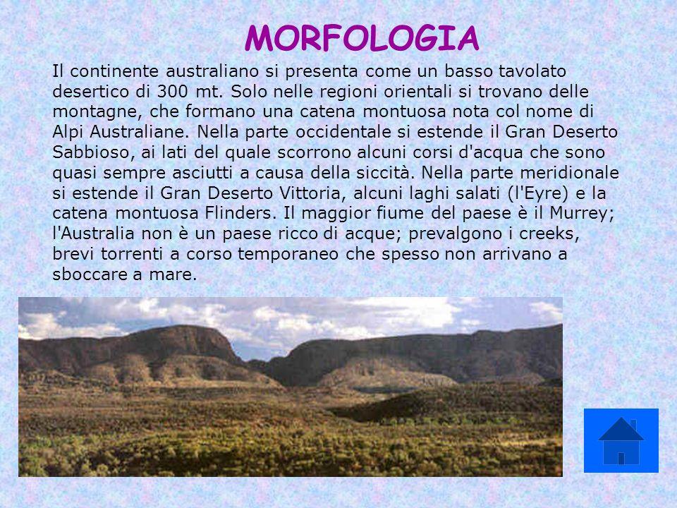 MORFOLOGIA Il continente australiano si presenta come un basso tavolato desertico di 300 mt. Solo nelle regioni orientali si trovano delle montagne, c