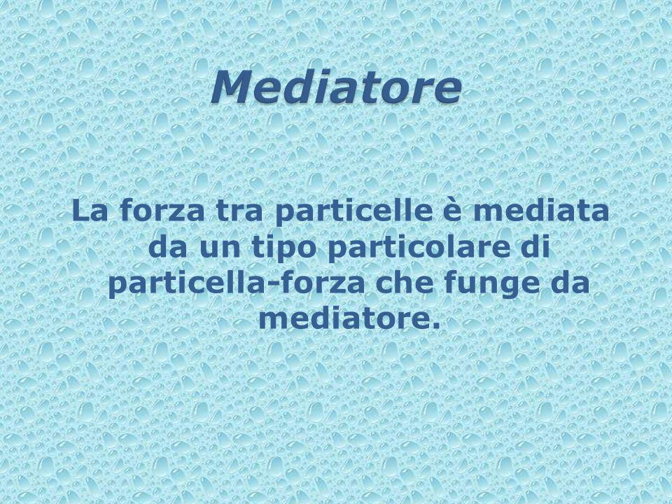 La forza tra particelle è mediata da un tipo particolare di particella-forza che funge da mediatore.