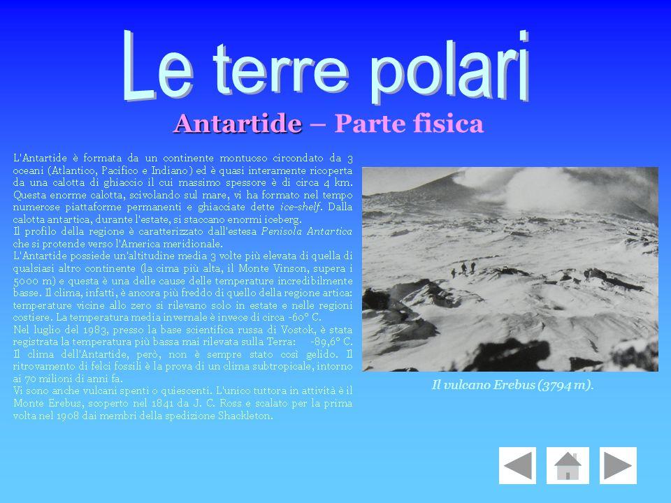 Antartide Antartide – Parte fisica Il vulcano Erebus (3794 m).