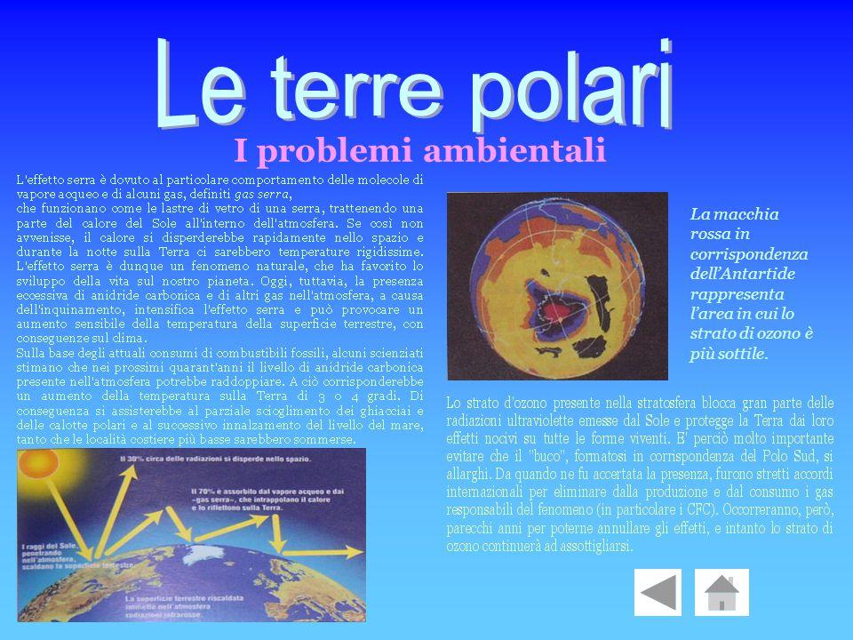 I problemi ambientali La macchia rossa in corrispondenza dellAntartide rappresenta larea in cui lo strato di ozono è più sottile.