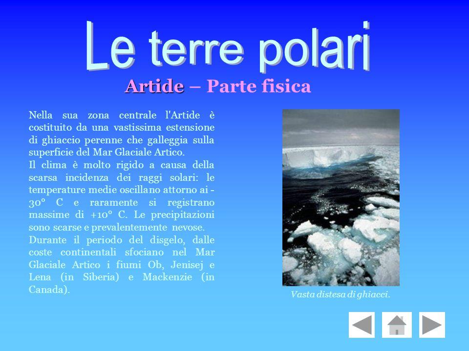 Nella sua zona centrale l'Artide è costituito da una vastissima estensione di ghiaccio perenne che galleggia sulla superficie del Mar Glaciale Artico.