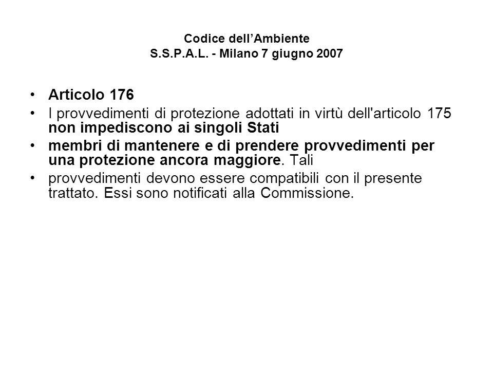 Codice dellAmbiente S.S.P.A.L. - Milano 7 giugno 2007 Articolo 176 I provvedimenti di protezione adottati in virtù dell'articolo 175 non impediscono a