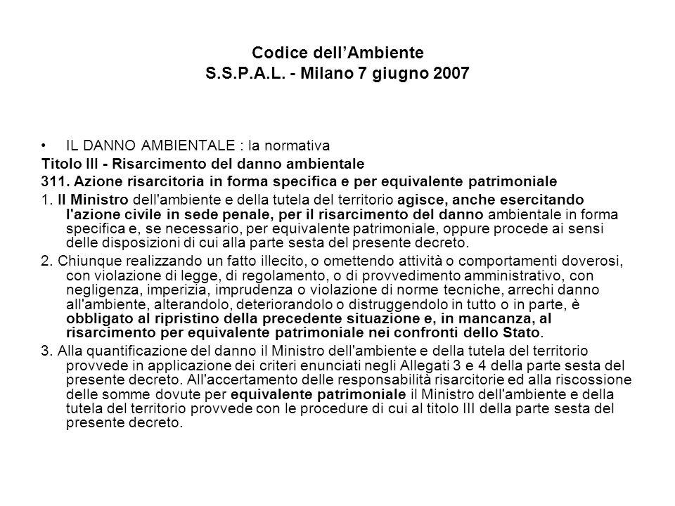 Codice dellAmbiente S.S.P.A.L. - Milano 7 giugno 2007 IL DANNO AMBIENTALE : la normativa Titolo III - Risarcimento del danno ambientale 311. Azione ri