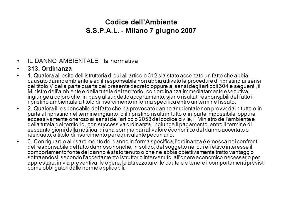 Codice dellAmbiente S.S.P.A.L. - Milano 7 giugno 2007 IL DANNO AMBIENTALE : la normativa 313. Ordinanza 1. Qualora all'esito dell'istruttoria di cui a