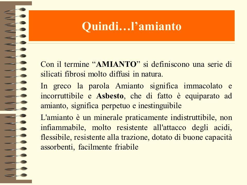 Quindi…lamianto Con il termine AMIANTO si definiscono una serie di silicati fibrosi molto diffusi in natura. In greco la parola Amianto significa imma
