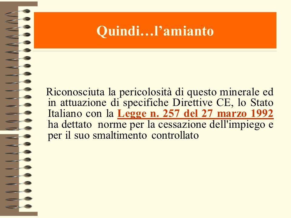 Quindi…lamianto Riconosciuta la pericolosità di questo minerale ed in attuazione di specifiche Direttive CE, lo Stato Italiano con la Legge n. 257 del