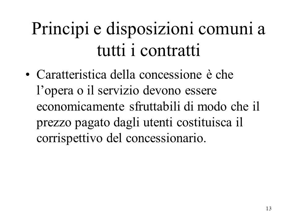 13 Principi e disposizioni comuni a tutti i contratti Caratteristica della concessione è che lopera o il servizio devono essere economicamente sfrutta