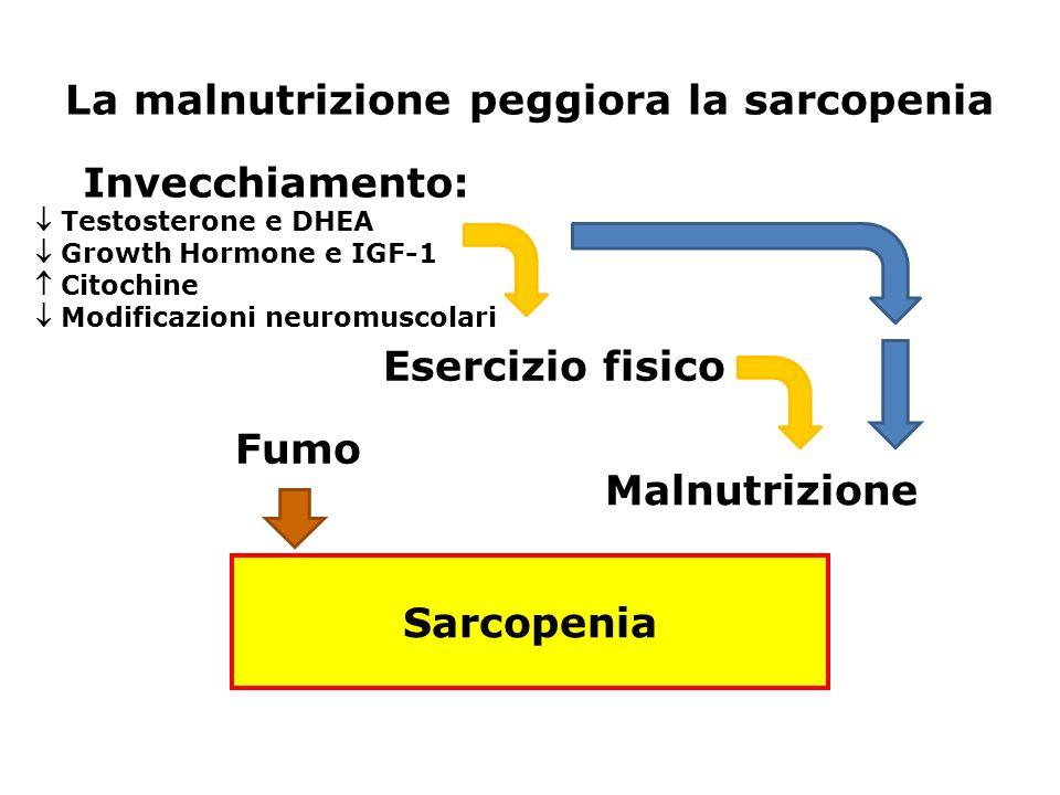 La malnutrizione peggiora la sarcopenia Esercizio fisico Invecchiamento: Testosterone e DHEA Growth Hormone e IGF-1 Citochine Modificazioni neuromusco