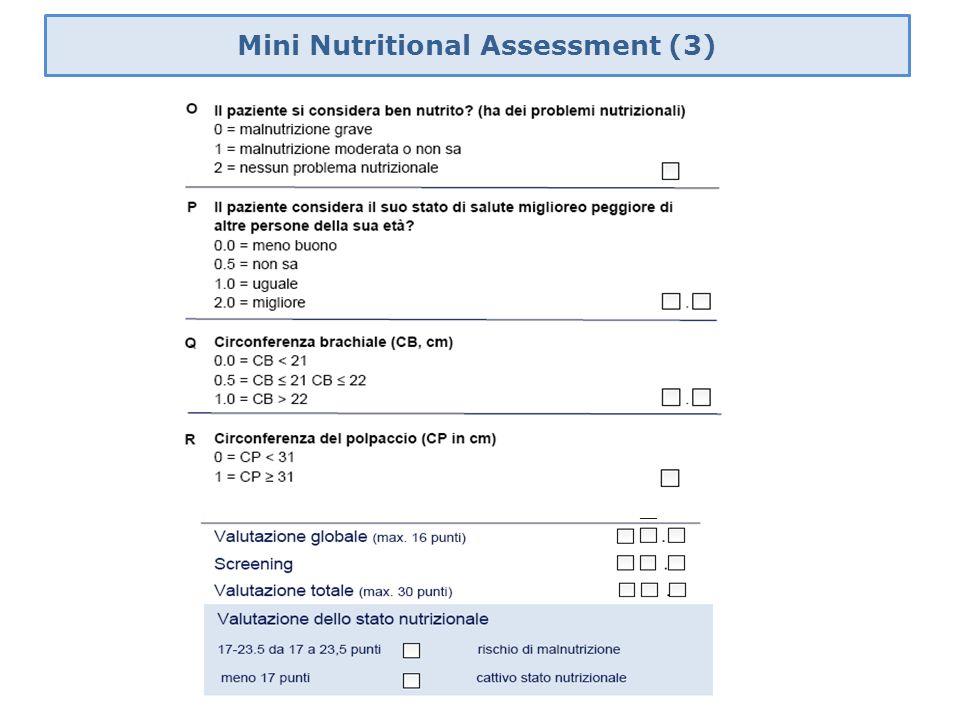 Mini Nutritional Assessment (3)