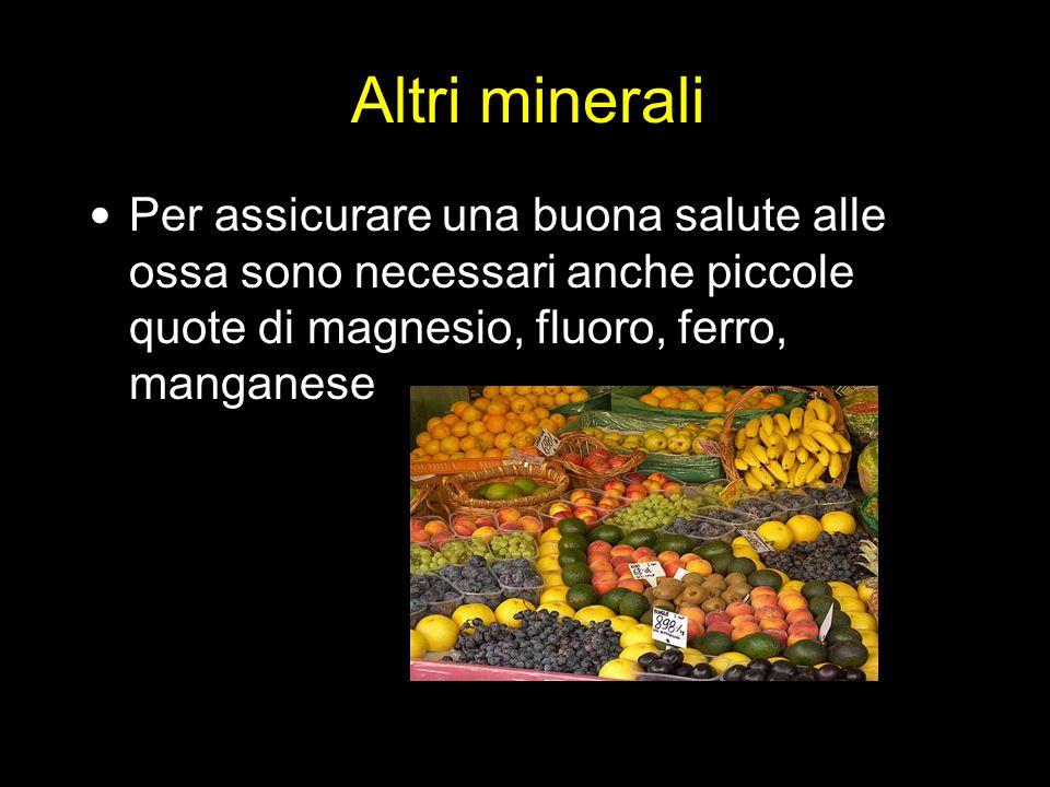 Altri minerali Per assicurare una buona salute alle ossa sono necessari anche piccole quote di magnesio, fluoro, ferro, manganese