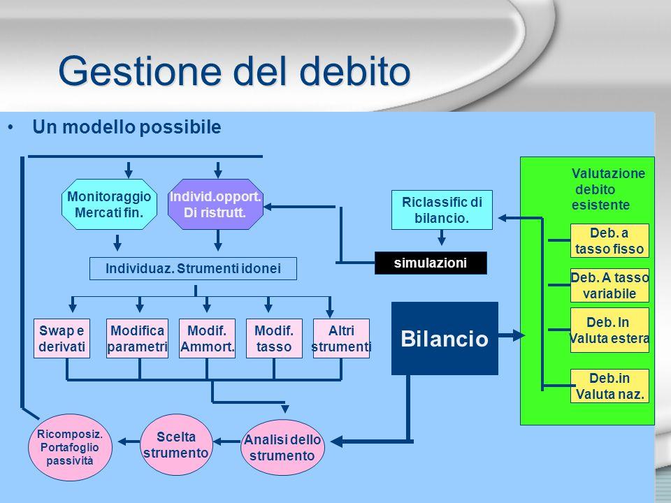 Gestione del debito Un modello possibile Deb. a tasso fisso Deb. A tasso variabile Deb. In Valuta estera Deb.in Valuta naz. Valutazione debito esisten