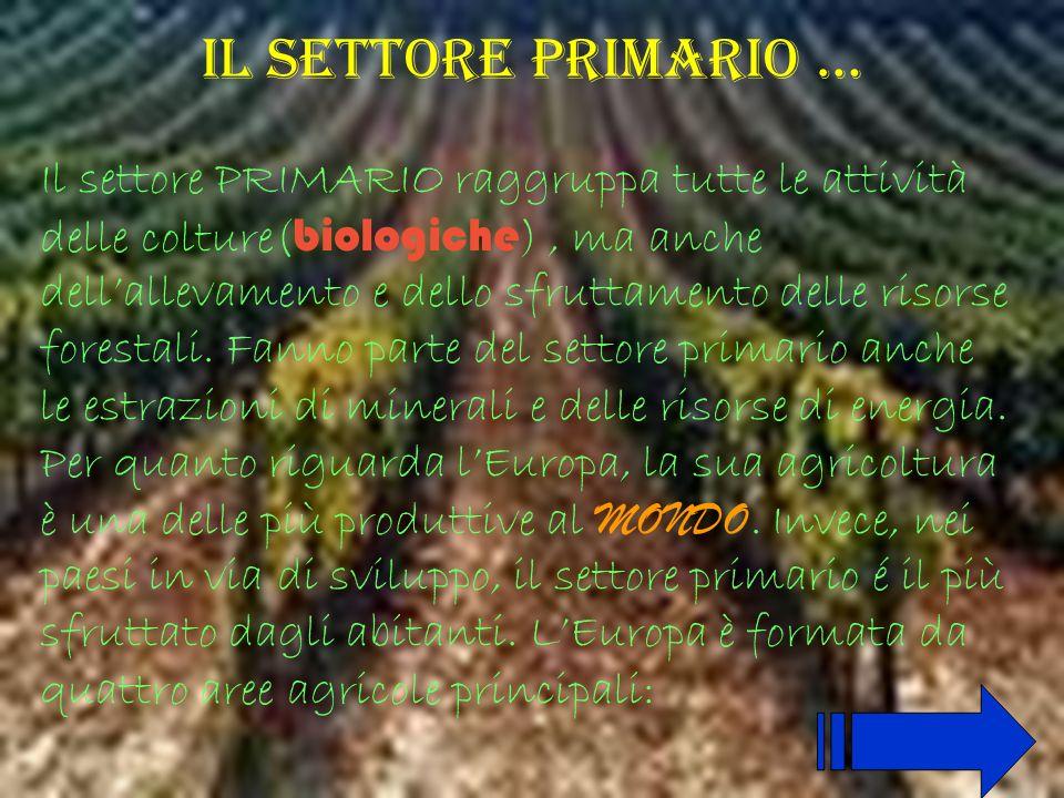 Il settore primario … Il settore PRIMARIO raggruppa tutte le attività delle colture( biologiche ), ma anche dellallevamento e dello sfruttamento delle risorse forestali.