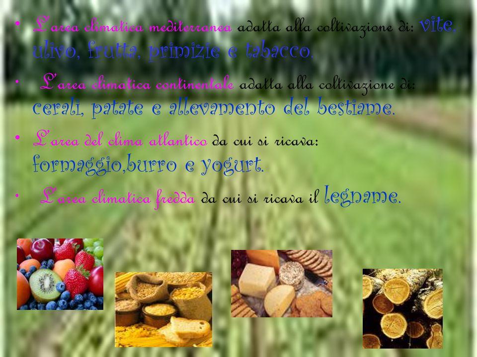Larea climatica mediterranea adatta alla coltivazione di: vite, ulivo, frutta, primizie e tabacco. L area climatica continentale adatta alla coltivazi