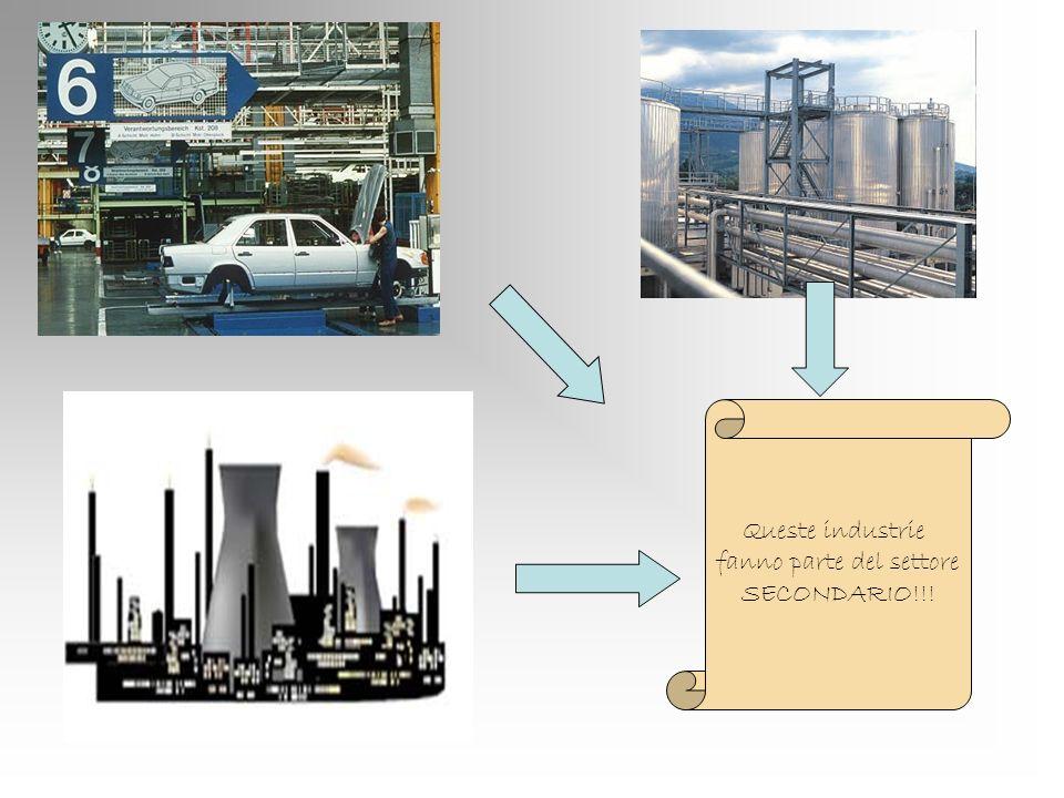 Queste industrie fanno parte del settore SECONDARIO!!!