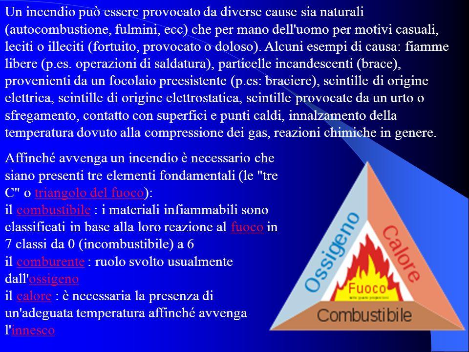 Un incendio può essere provocato da diverse cause sia naturali (autocombustione, fulmini, ecc) che per mano dell'uomo per motivi casuali, leciti o ill