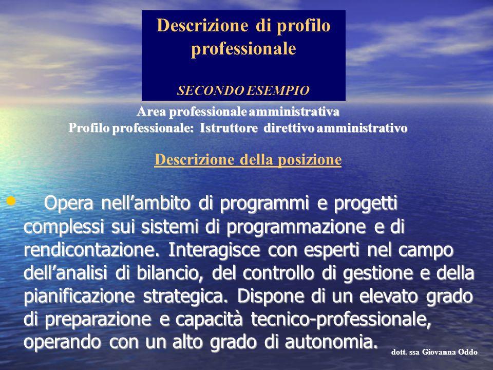 Opera nellambito di programmi e progetti complessi sui sistemi di programmazione e di rendicontazione. Interagisce con esperti nel campo dellanalisi d