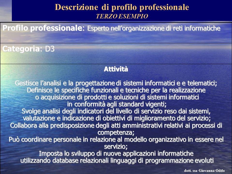 Profilo professionale: Esperto nellorganizzazione di reti informatiche Categoria: D3 Attività Gestisce lanalisi e la progettazione di sistemi informat