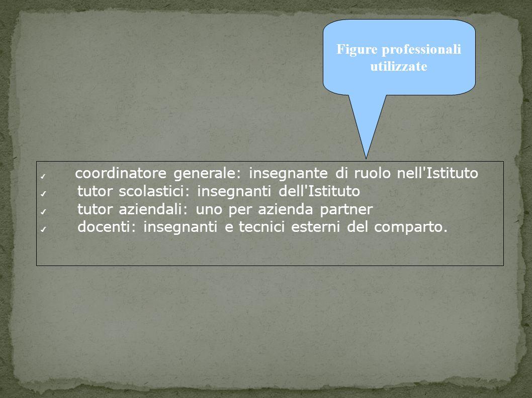 coordinatore generale: insegnante di ruolo nell Istituto tutor scolastici: insegnanti dell Istituto tutor aziendali: uno per azienda partner docenti: insegnanti e tecnici esterni del comparto.