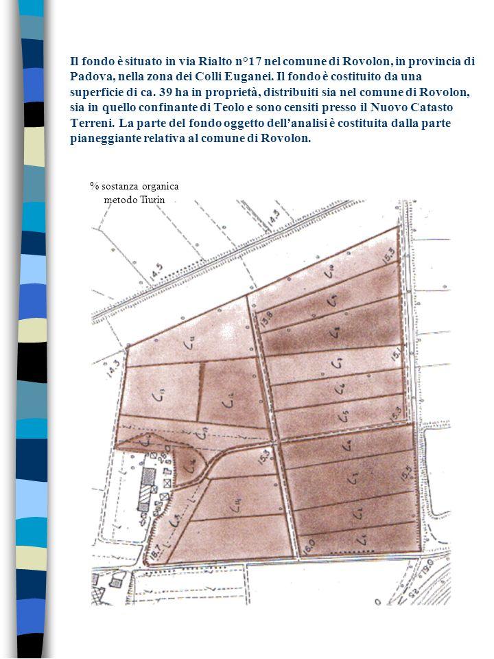 Il fondo è situato in via Rialto n°17 nel comune di Rovolon, in provincia di Padova, nella zona dei Colli Euganei. Il fondo è costituito da una superf