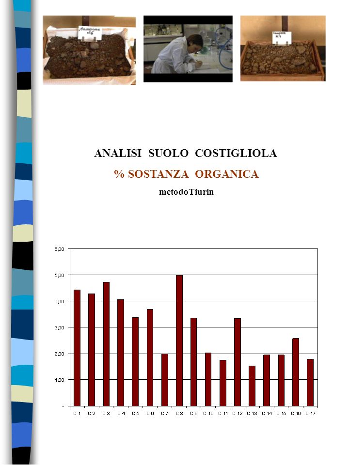 ANALISI SUOLO COSTIGLIOLA % SOSTANZA ORGANICA metodoTiurin